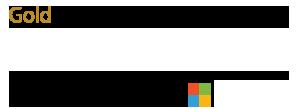 Gold Microsoft Partner 300x109 V1
